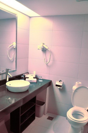 Batam View Deluxe Room (Bathroom)